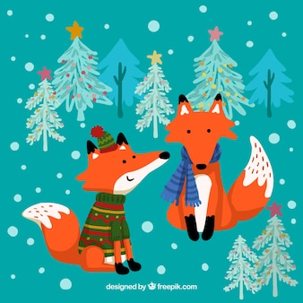 Winter foxes illustration