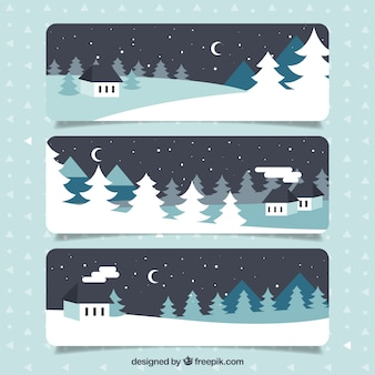 Winter night banners