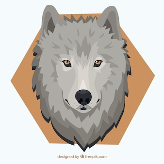 Wolf background with yellow eyes and hexagon
