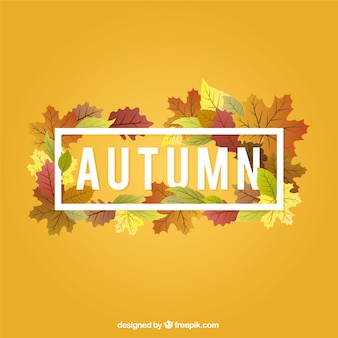 Yellow background with autumn leaves