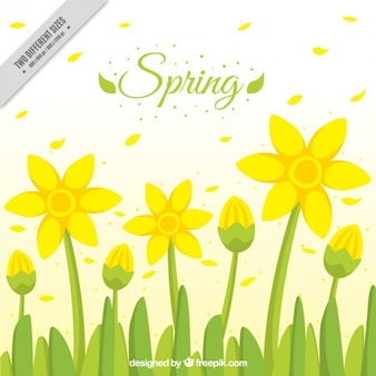 Yellow flowers spring background