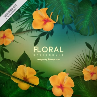 Yellow tropical flowers with leaves background