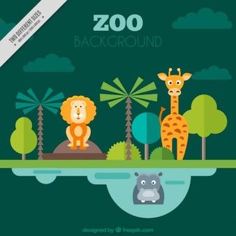 Zoo animals background