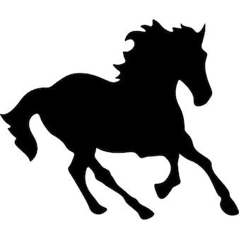 Pferd schwarz Laufform