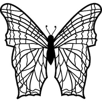 Farfalla con le ali complesse linee sottili modello da vista superiore