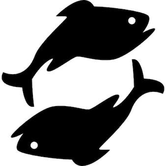 Pesci segno