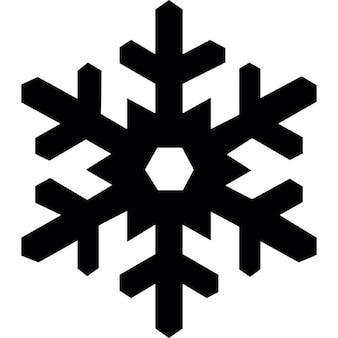 Sneeuwvlok winter vorm