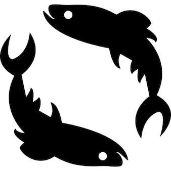 Vissen sterrenbeeld