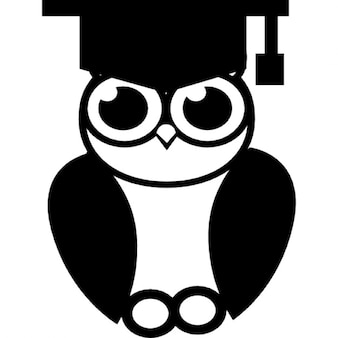 Coruja da graduação