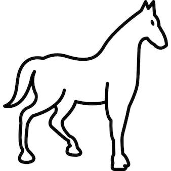 Parar de raça esboço cavalo