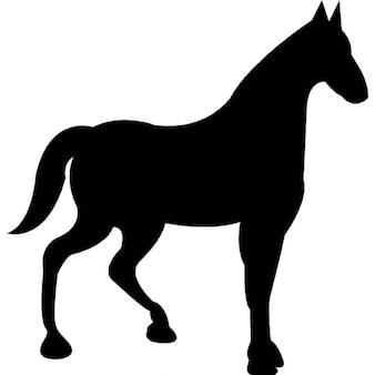 Course de chevaux de silhouette noire