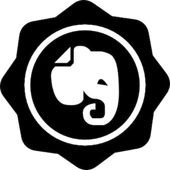 Elephant social vecteurs et photos gratuites - Photos d elephants gratuites ...