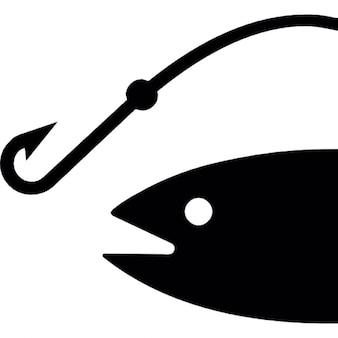 La tête du poisson et un crochet de chasse