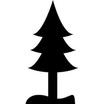 Silhouette d'arbre de pin