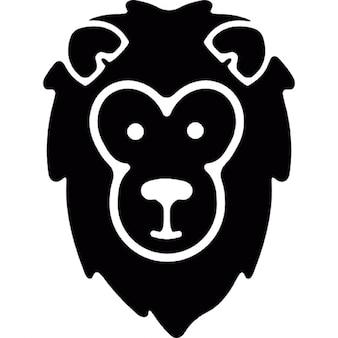 Cara del león