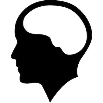Cerebro dentro de la cabeza humana