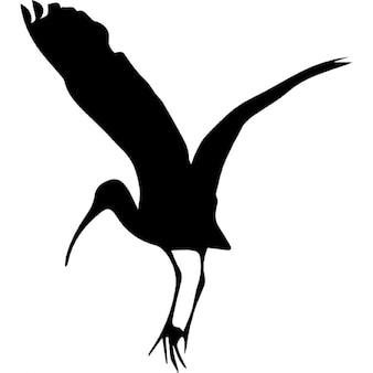 Forma cigüeña pájaro