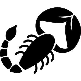 Forma de escorpión de la muestra del zodiaco