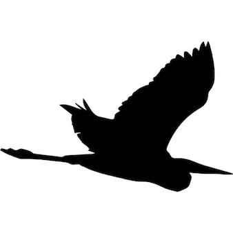 Garza forma de volar