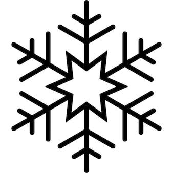 Seis copo de nieve estrella señalada