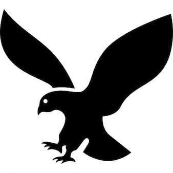 Silueta águila en vuelo