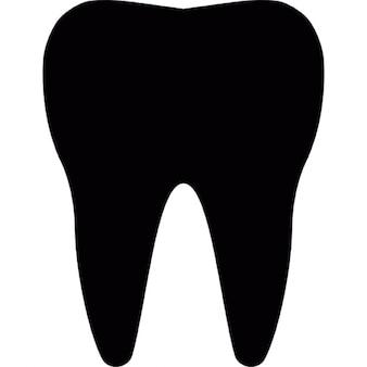 Silueta molar