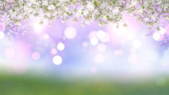 3D render de cerisier fleur sur un fond de lumières bokeh