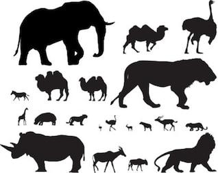 animaux stock de vecteur africain