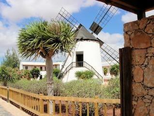 moulin à vent traditionnel à Fuerteventura ensoleillée