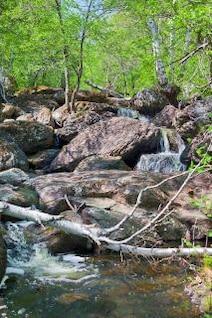 chute d'eau au printemps