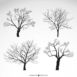 Arbres d'hiver silhouettes