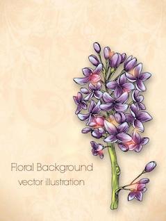 Lilas peint fleur vecteur matériel fond ensemble