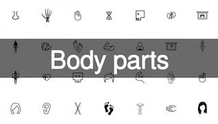 199 parties du corps pack d'icônes