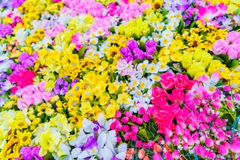 Abstrait artificiel belle flore aromatique