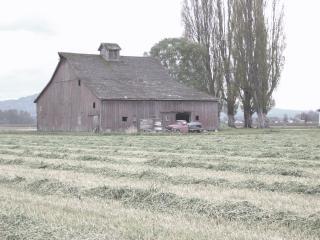 Ancienne grange, sur le terrain