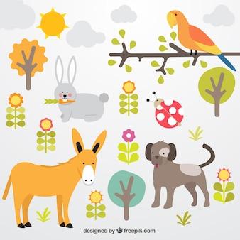 la collecte des animaux