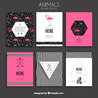Animaux brochures