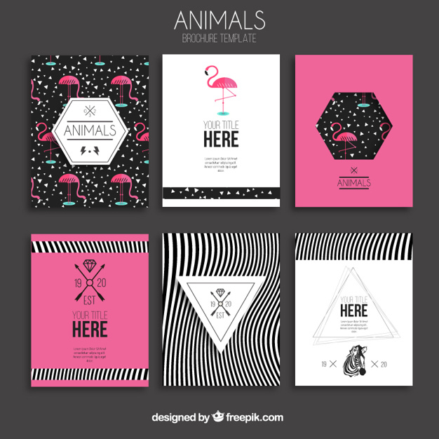 Animaux brochures