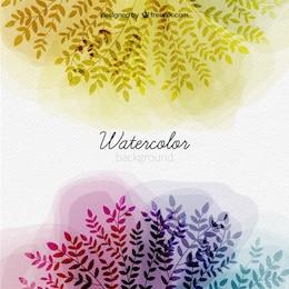 Aquarelle leaves