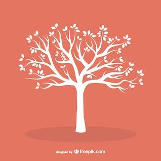 Arbre blanc avec des feuilles