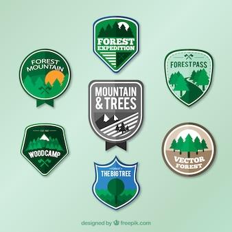 badges de forêt