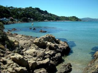 Baie Karaka, Wellington