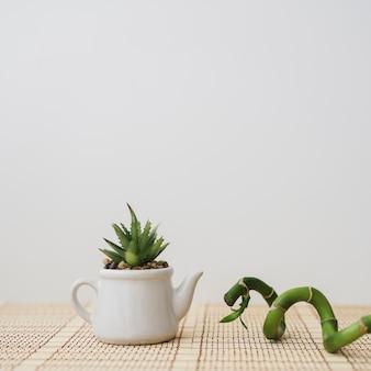 Bambou à côté d'une théière avec plante
