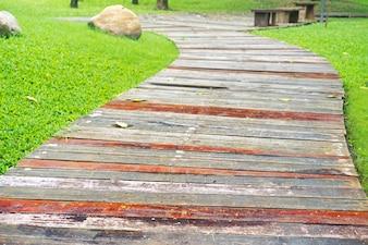 Boardwalk avec des feuilles sèches
