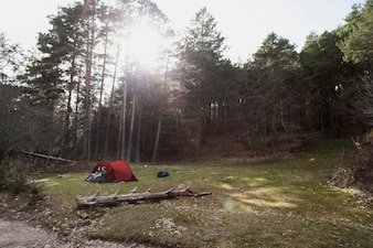 Bonne fille qui camping à la campagne