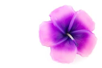 Bougie aromatique avec des fleurs en forme