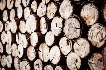 Bûches de bois de chauffage