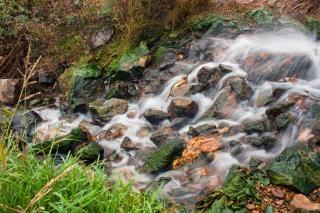 cascade fraîche