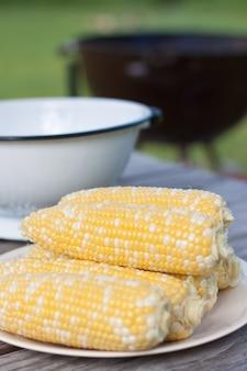 Céréales fraîches sur assiette blanche, Fête barbecue