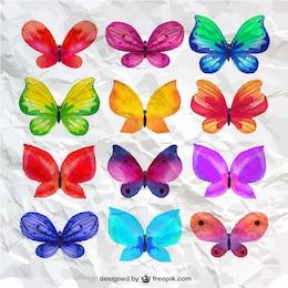 collecte de papillons Aquarelle